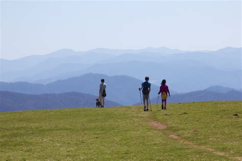 hiking trails in the blue ridge our top 10 family favorites blue ridge mountain life