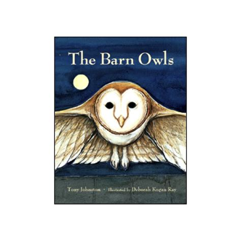 owl picture book the barn owls book owl book for