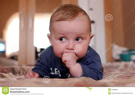 cute young boy royalty free stock photography image cute young baby boy royalty free stock photography image