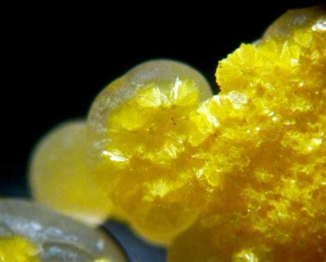 1000 images about radioactive rocks and gems on