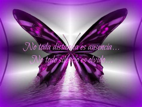 imagenes d mariposas hermosas camila alvarado google
