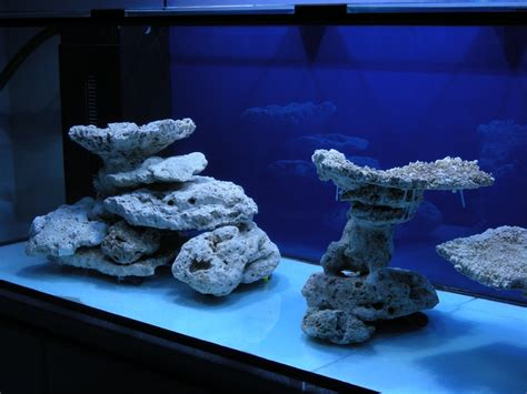 Reef Tank Aquascaping by Aquascaping Marine Minimalist Aquascaping Page 31