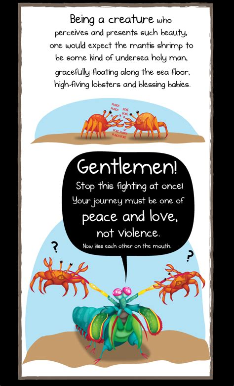 Tiny Houses Pictures by Why The Mantis Shrimp Is My New Favorite Animal The Oatmeal