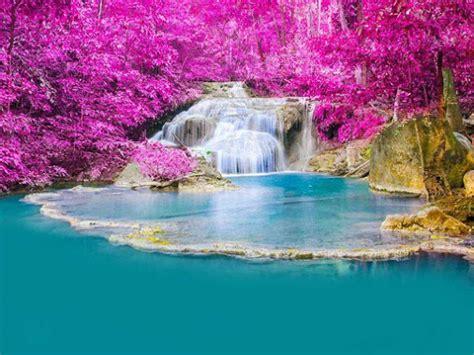 imagenes hermosas reales fotofrontera cascada de agua turquesa con flores hermosas