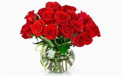 imagenes bonitas de rosas de cumpleaños fotos de floreros con flores fotos bonitas de amor