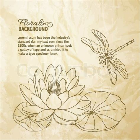 water lily and dragonfly stock vector colourbox
