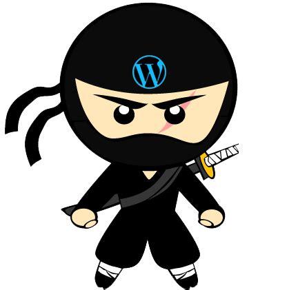 the wordpress ninja   media display options page