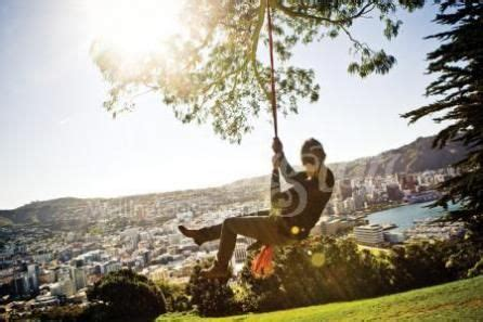 rope swing new zealand 35 best images about coolest little capital on pinterest