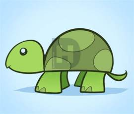 doodle drawer how to draw a turtle for step by step animals for