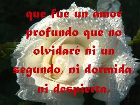imagenes de rosas blancas con frases frases rom 225 nticas de amor y una rosa blanca youtube