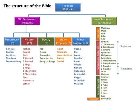 the history of the bible an introduction books for teenagers books of the bible overview