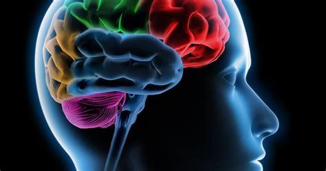 neuroscience nursing australasian neuroscience nurses association