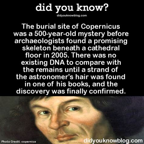 before i found you a gripping mystery of killer twists books did you the burial site of copernicus was a 500