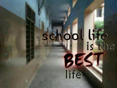 Best School Life Quotes In Hindi