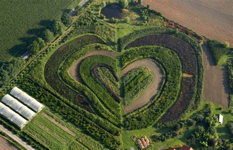 Landscape Shaped Pictures Hearts In Nature Landscape Shaped Garden In