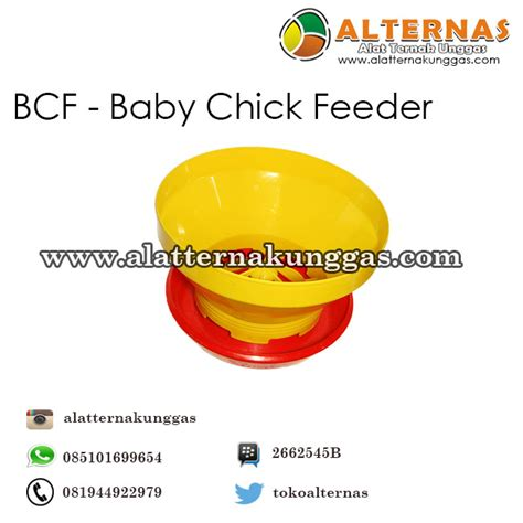 Tempat Pakan Ternak Babi baby feeder bcf alat ternak alat ternak unggas
