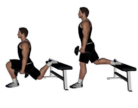 dumbbell bench lunges workouts faithandfitnessembrace