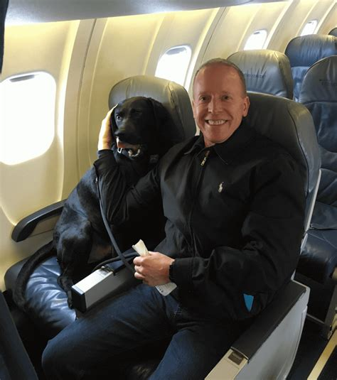 jake s on a plane air travel with your pet eric and peety