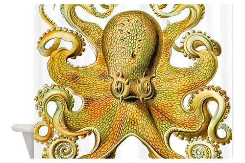 yellow octopus coupon