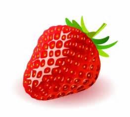 딸기 자연 벡터 신뢰 무료 벡터 무료 다운로드