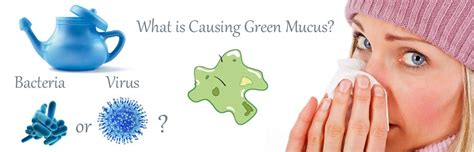 Light Green Mucus by Mucus Color Meaning And Other Facts About Mucus Mucus Color