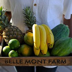 5 caribbean spots with farm to table dining : travelage west