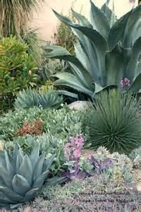agave garden desert landscaping pinterest gardens