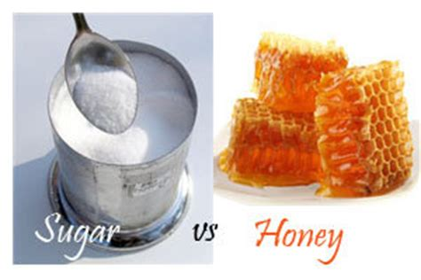 honey vs sugarawaken the abs within