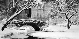 Park Plaza Gardens Winter Park - winter paradise central park david balyeat photography portfolio