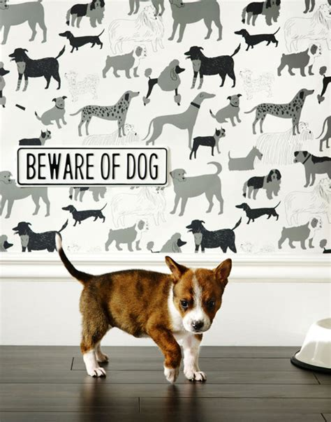 dog house wallpaper dog park wallpaper grey eclectic wallpaper by www