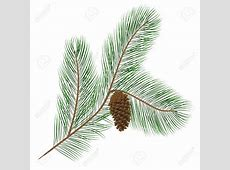 Pine straw clipart - Clipground Free Baby Related Clipart