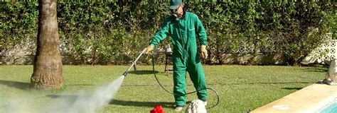 disinfestazione zecche giardino disinfestazioni insetti e zanzare pesaro e urbino
