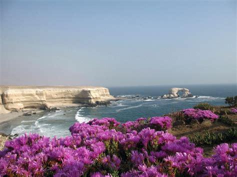 imagenes naturales de chile paisajes de ensue 241 o paisajes de chile