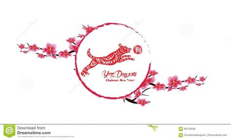 new year cherry blossom background flowers background cherry blossom isolated white