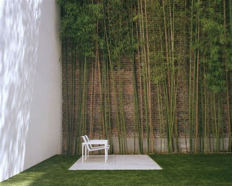 Garden Decoration With Bamboo by Garden With Bamboo Wall Decoration Interior Design