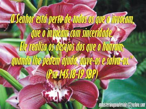 imagenes cristianas en portugues im 225 genes con mensajes de feliz cumplea 241 os en portugu 233 s
