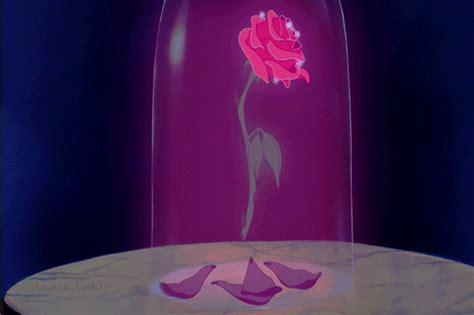 enchanted roses enchanted rose on tumblr