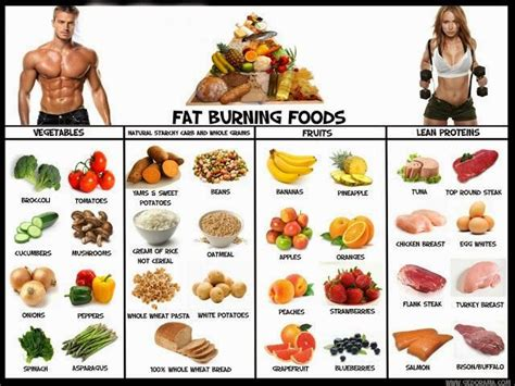 a list of healthy fats this free list of burning foods will help you make the