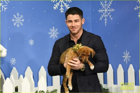 jumanji movie theme song nick jonas helps find forever homes for these adorable