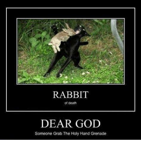 Dear God Meme - rabbit of death dear god someone grab the holy hand