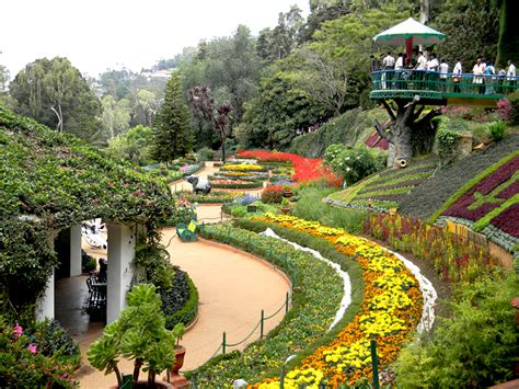 The Beauty Of Botanical Gardens In Ooty Wild Planet Botanical Garden Of India
