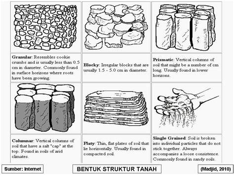 pengertian patterns of action adalah pengertian dan struktur tanah karya arido