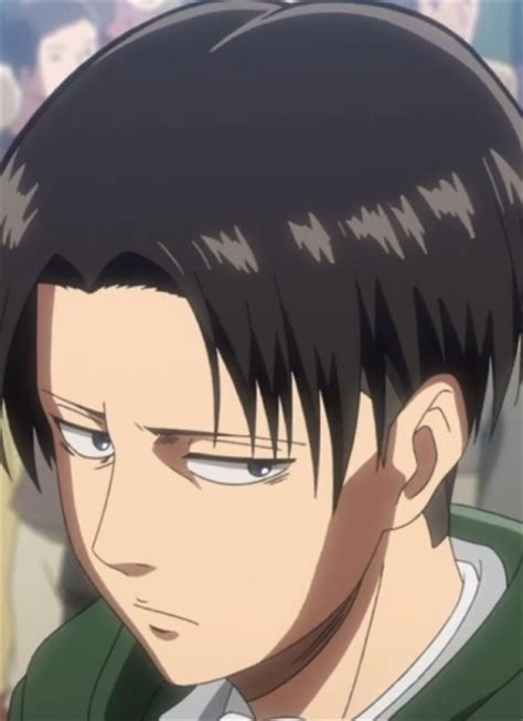 whats the name of captain levis haircut rivaille s undercut attack on wiki fandom powered by wikia