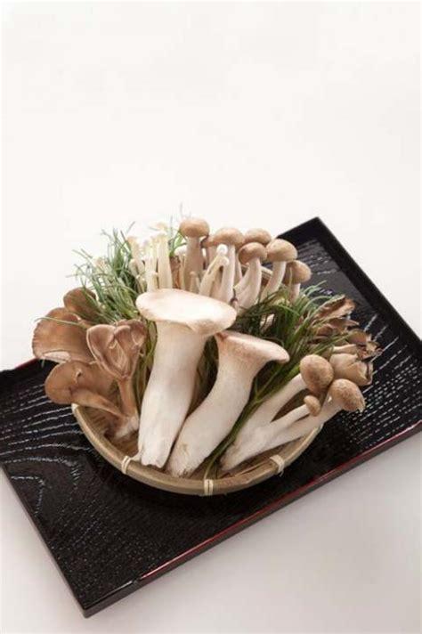 gli alimenti contengono vitamina d gli alimenti con pi 249 vitamina d i funghi forumsalute it