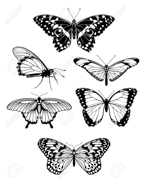 butterfly tattoo lines butterfly outline clipartion com
