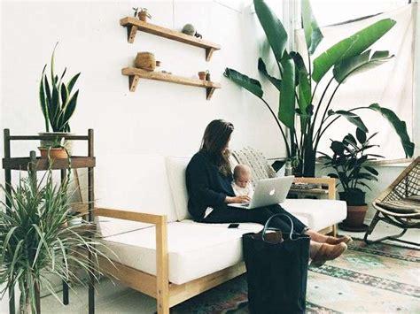 piante interne idee per decorare casa con le piante foto 32 40
