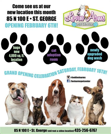 the puppy store st george st george pet store grand opening at lovin arms pet center