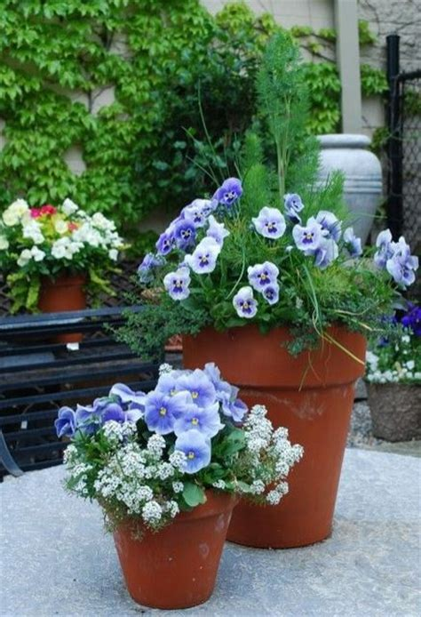 Beautiful Planters by Beautiful Planters With Flowers And Herbs Pictures Jpg