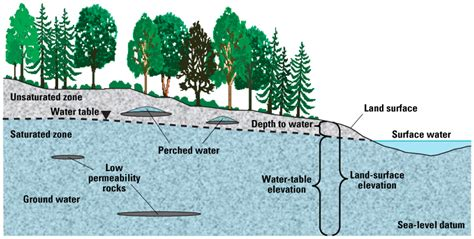 The Location Of The Water Table Is Subject To Change Groundwater Earth Science Socratic