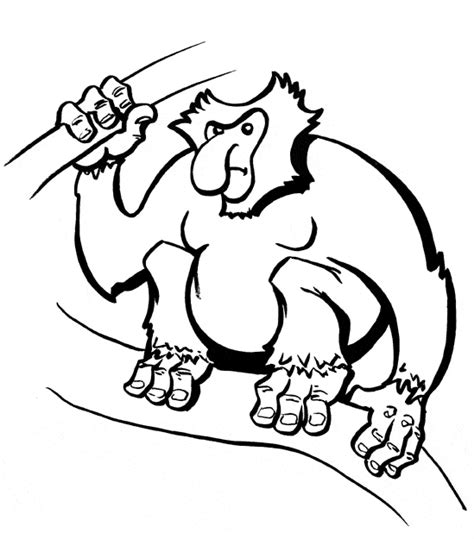 proboscis monkey coloring page free coloring pages of kid body outline
